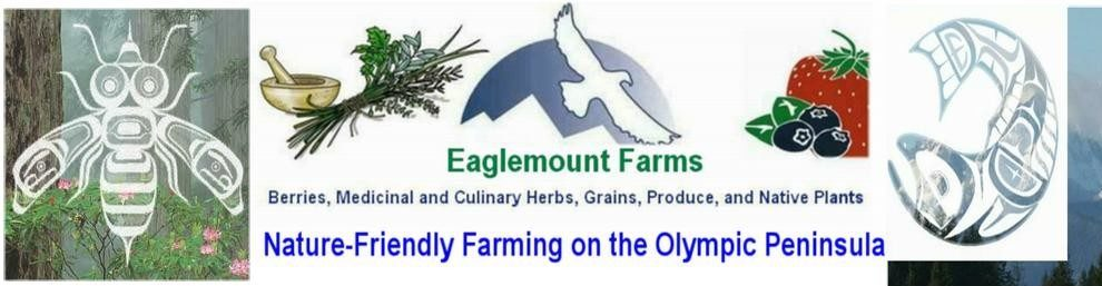 EAGLEMOUNT FARMS